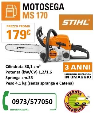 MS170 179 + Estens